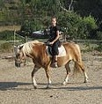 portugal horse riding