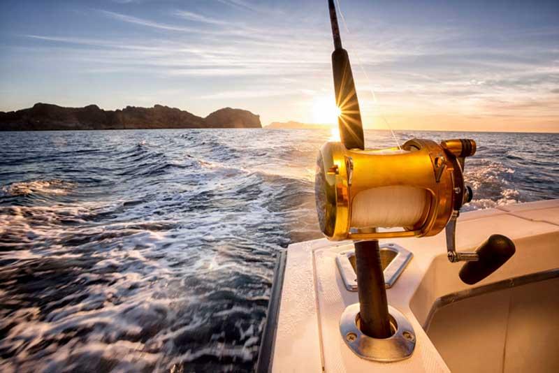 Lisbon and Cascais Fishing