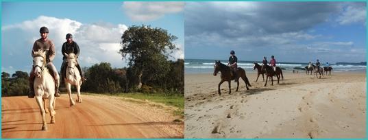Algarve horse riding