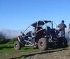 Madeira buggy tour